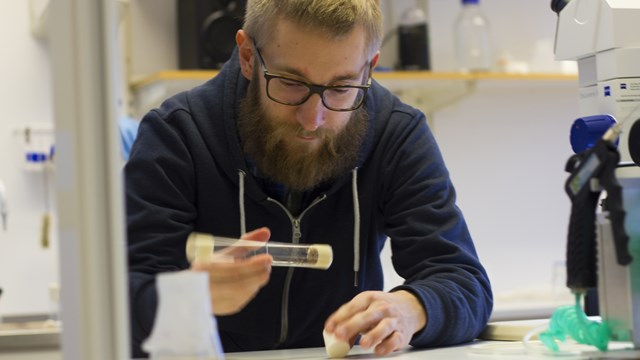 martin brengdahl working at the lab bench