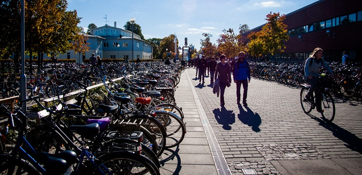 Bicycles at Linköping University.