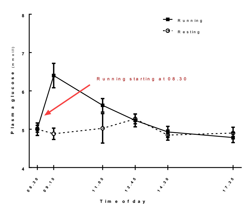diagram showing that blood sugar increases after running hard