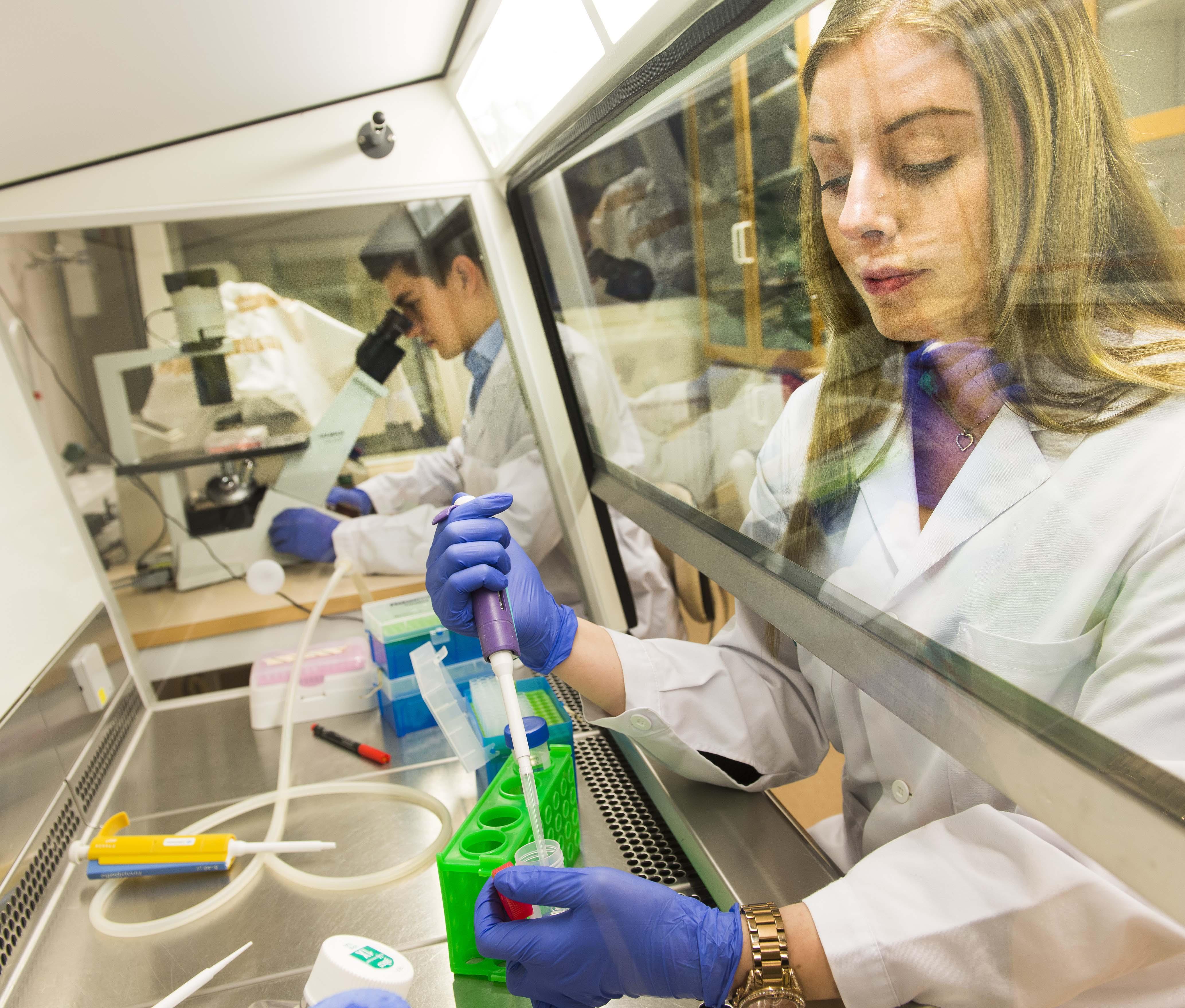 Forskare tillverkade spermier i labbet