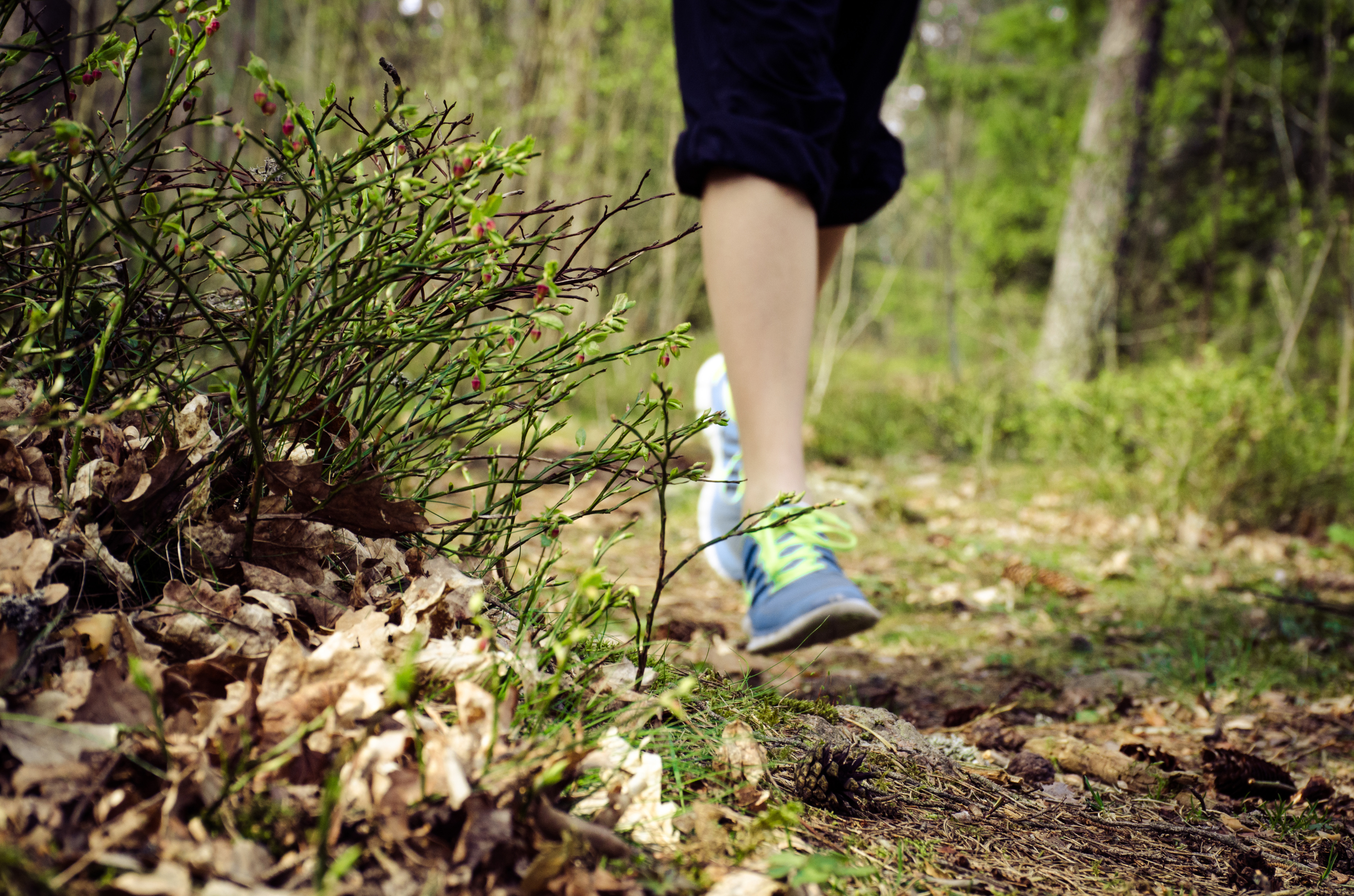 running feet in forest