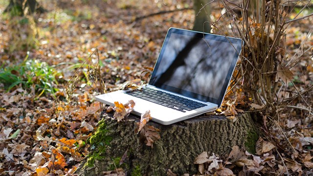 Laptop on a stump.