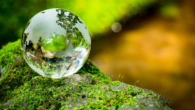 earth globe of glass in the woods