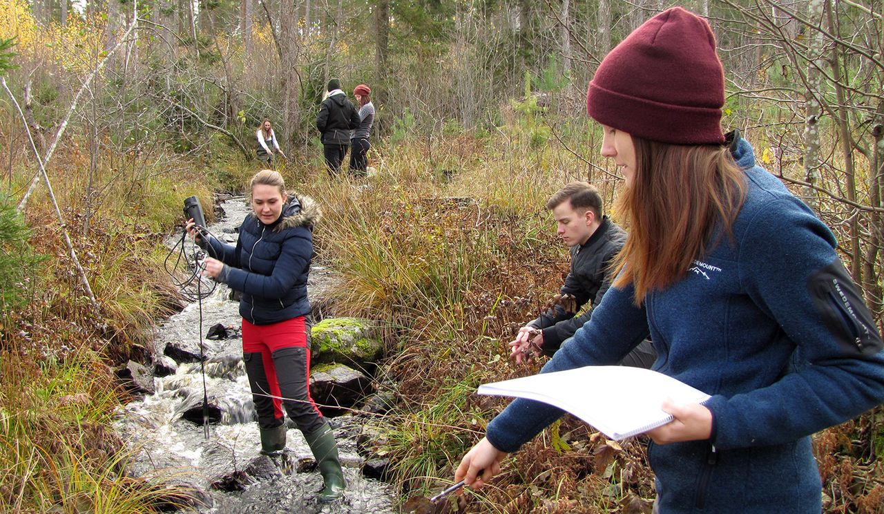 Biologistudenter på exkursion. Foto: Karolin Storck