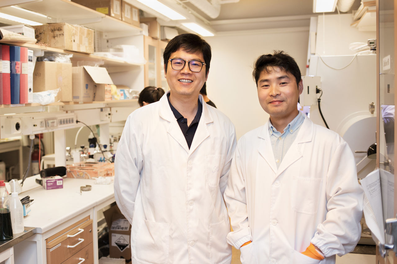 Sai Bai and Zhongcheng Yuan, Biomolecular and Organic Electronics;  Biomolecular and Organic Electronics