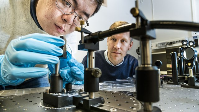 Shangzhi Chen, doctoral student and Magnus Jonsson, leader of the Organic Photonics and Nano-optics group at the Laboratory of Organic Electronics.