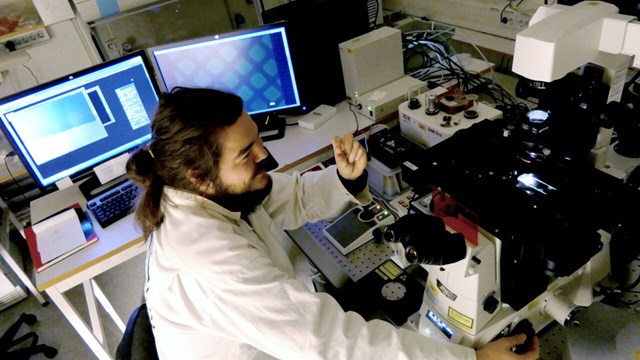 researcher working on a fluorescence microscope