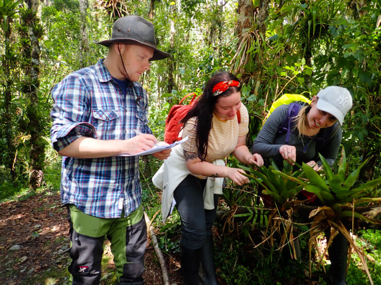 One man and two women examine a plant in the rainforest