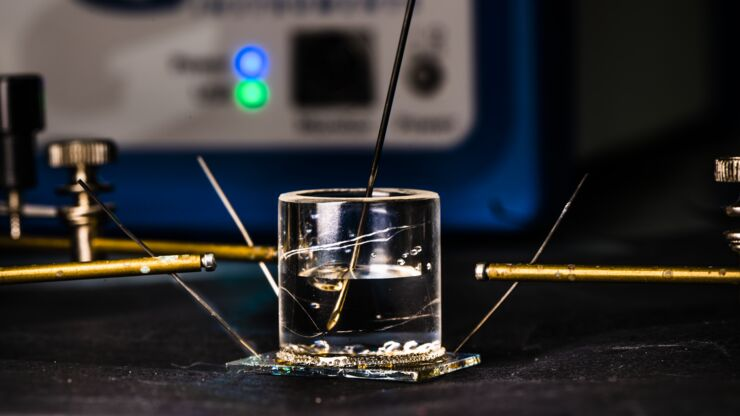 The organic electrochemical transistor in which the researchers have been able to deposit Shewanella oneidensis on one of the microelectrodes.
