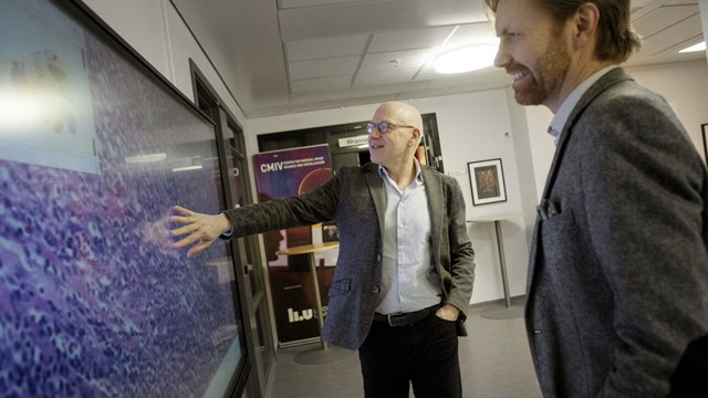 Two researchers discuss a digital image of tissue.