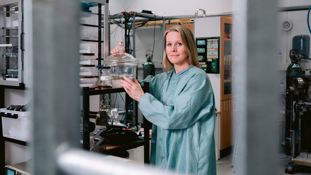 Professor Johanna Rosén, IFM, in the lab.