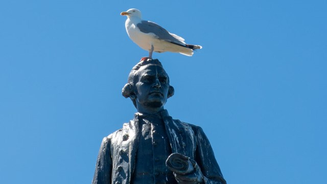 A Thomas Cook statue against a blue sky. A sea gull is standing on the statues head.