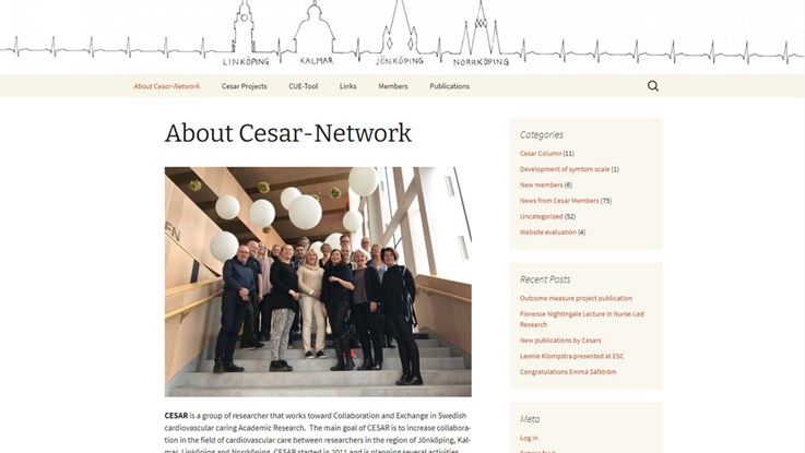 Print screen of Cesar networks former website.